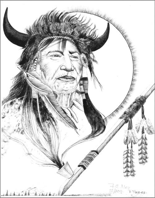 "Navajo ""Buffalo Warrior Spirit"" Print"