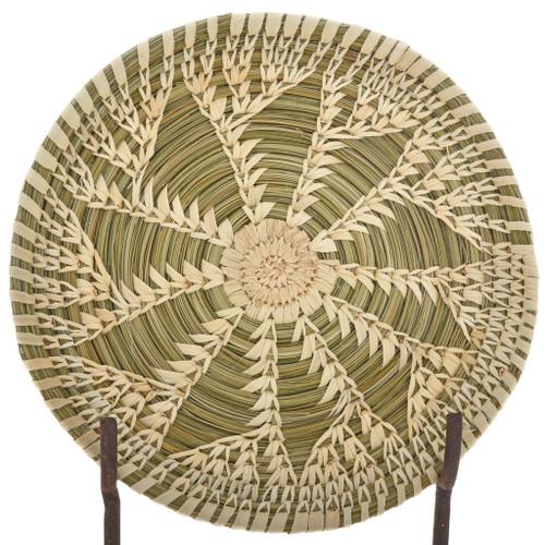 Tohono O'odham Indian Plate