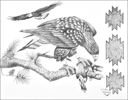 Eaglet First Catch Art Print 17220