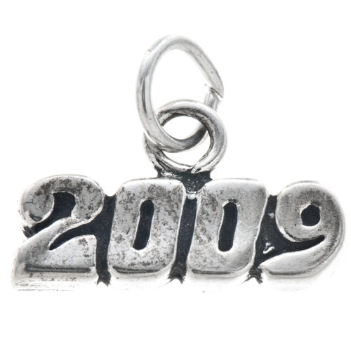 Sterling Silver 2009 Horizontal Charm Bracelet Charm Pendant Necklace