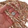 2mm by 10mm Valuta Shell Beads 16 inch Long Strand