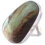 Kingman Turquoise Silver Ring 16926