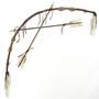 Buckskin Bow Crossed Arrows 29361