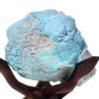 3.73 Pound Rough Turquoise Nugget Great for Carving 32660