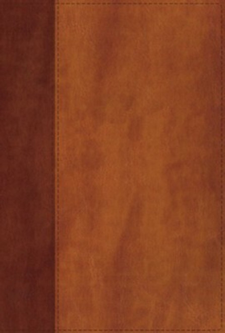 NIV Giant Print Compact Bible, Comfort Print, Softcover, Brown (red letter)