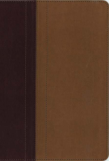 NIV Quest Study Bible, Burgundy/Tan Leathersoft Indexed