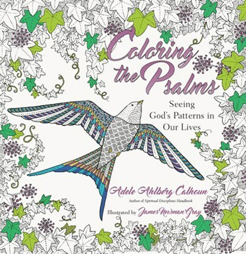 Coloring the Psalms - Seeing God's Patterns in Our Lives by Adele Ahlberg Calhoun, Illustrated by James Newman Gray