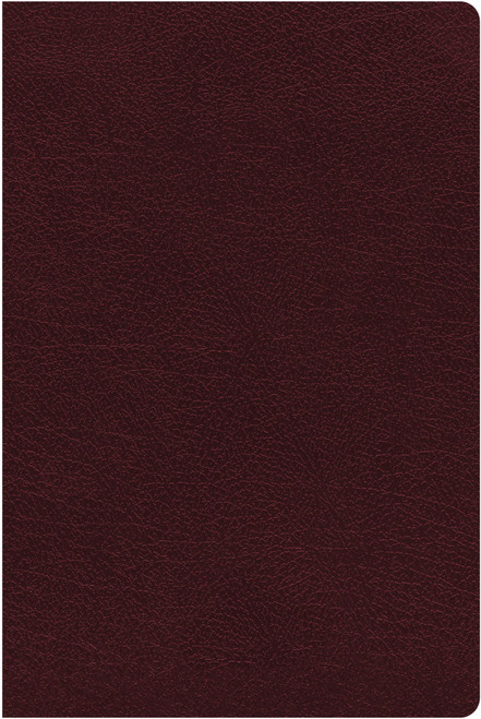 NIV Giant Print Reference Bible, Burgundy Bonded Leather, Red Letter, Thumb Indexed, Comfort Print