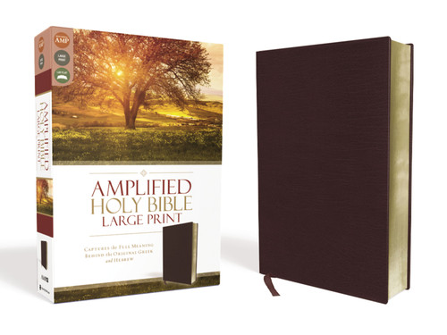 Amplified Bible Large Print Burgundy Bonded Leather