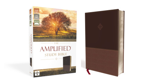 Amplified Study Bible Brown Leathersoft