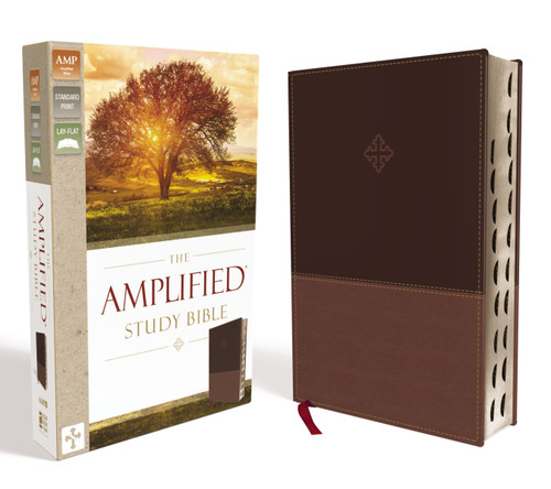 Amplified Study Bible Brown Leathersoft Indexed