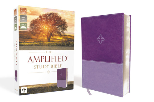 Amplified Study Bible Purple Leathersoft