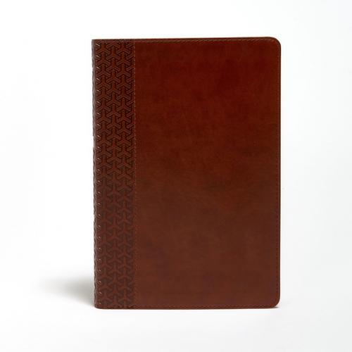 KJV Everyday Study Bible, British Tan LeatherTouch