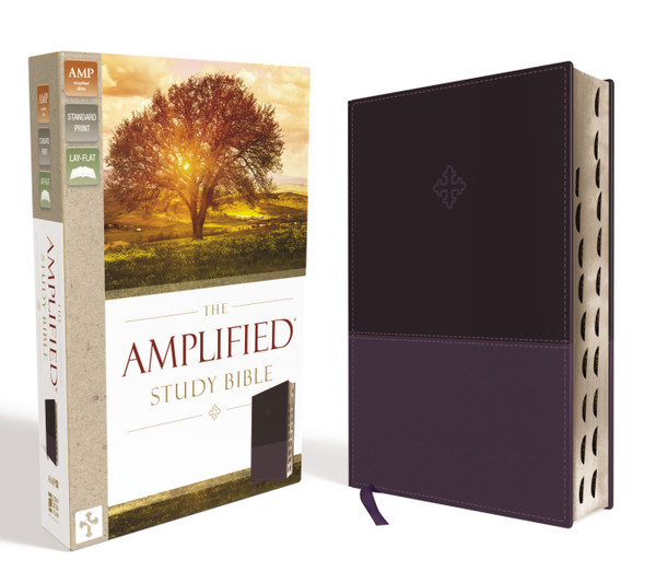 Amplified Study Bible Purple Leathersoft Thumb Indexed