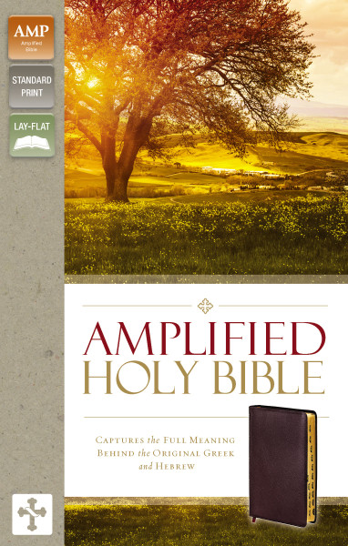 Amplified Holy Bible, Burgundy Bonded Leather, Indexed
