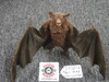 Vampire Bat poseable wings