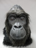Non animatronic gorilla head, with hand punched hair & whiskers all around the face for a more realistic look.