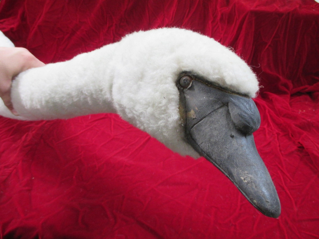 Realistic Swan or Goose Rig