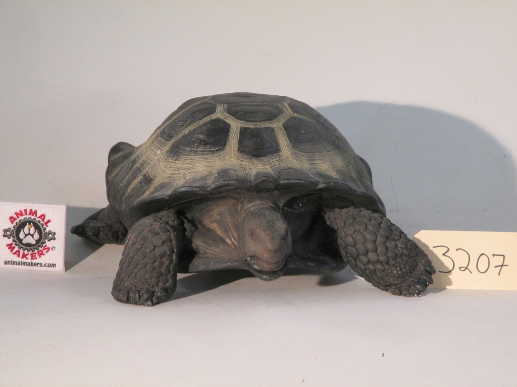 Animatronic box turtle puppet that takes direction