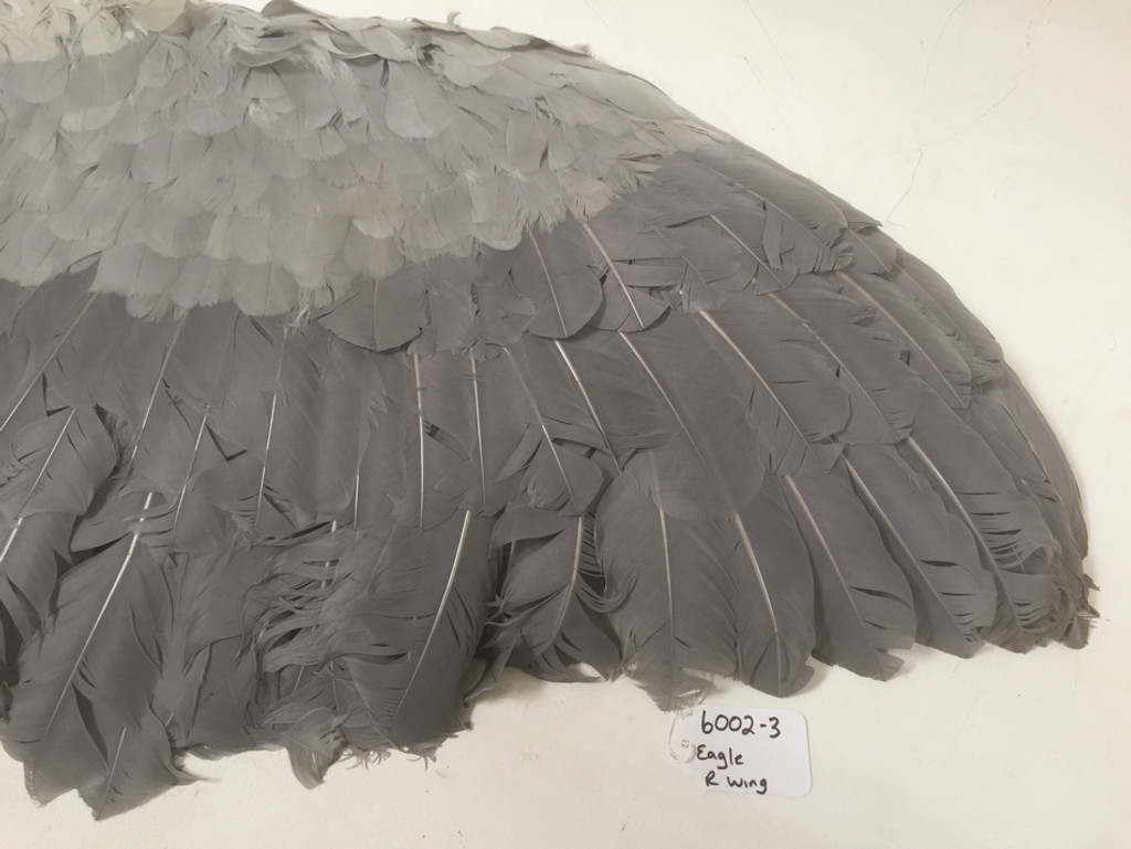 Adult eagle costume right wing sleeve
