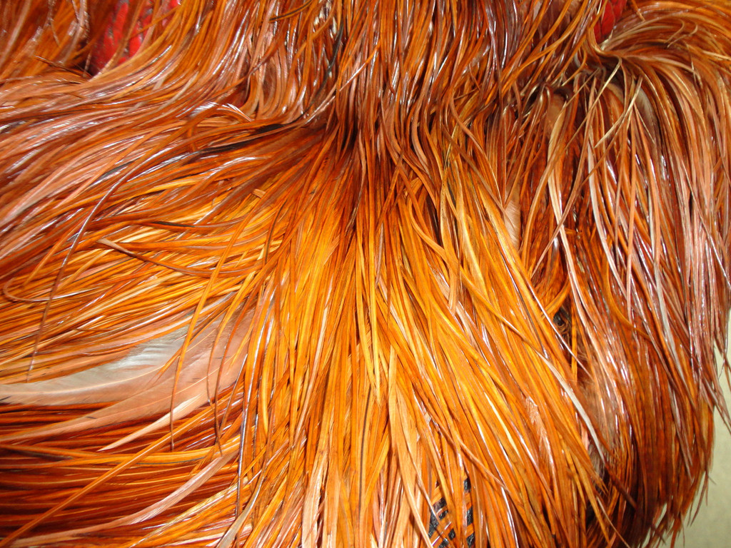 close up of feather work