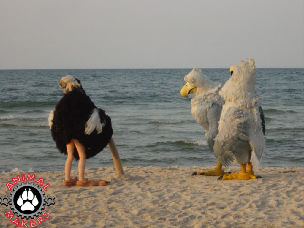 Skinny and fat eagle suits