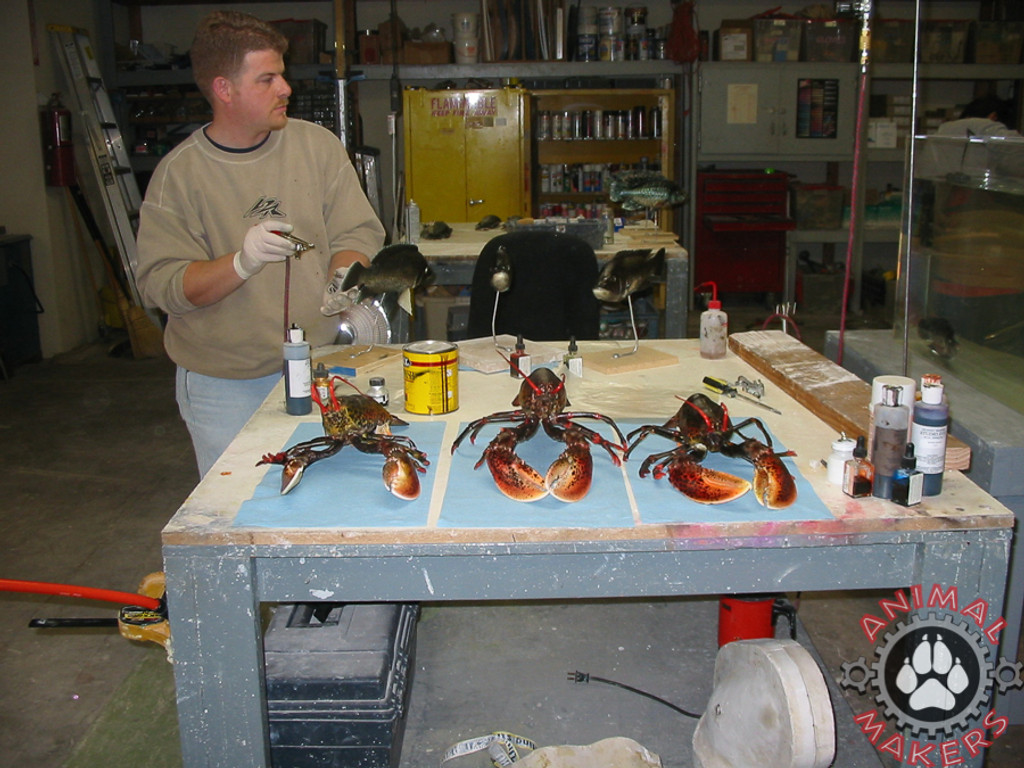 lobster replica movie props as they look the day we made them