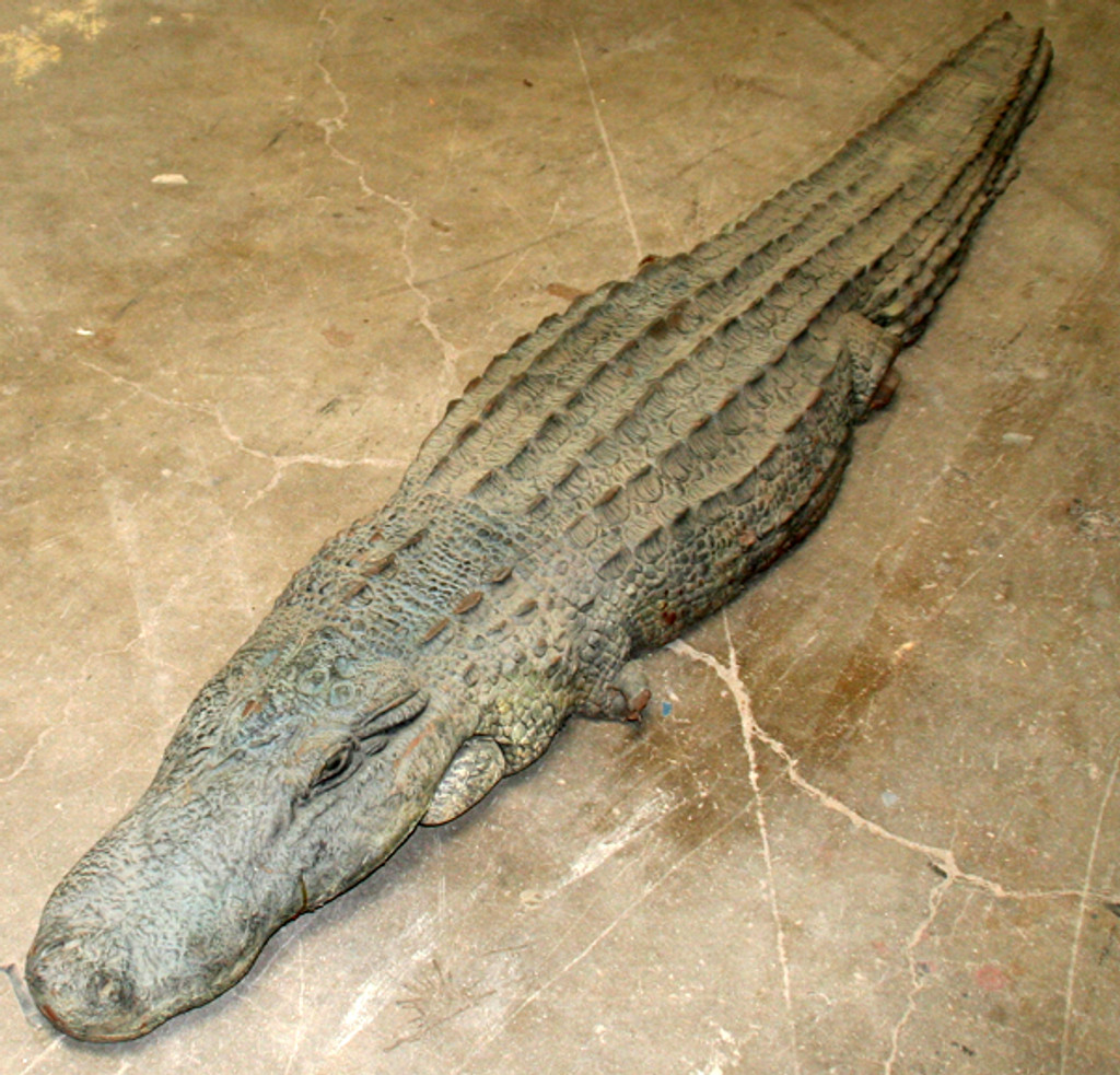 """This item is the top of the back and the mouth of an alligator. When a gator is in the water, you can only see the upper half of the body and you can see the open mouth. Used to put into ponds (especially shallow ones) or even pools. Created in strong foamed Urethane. Approximately 9'0"""" long and one foot wide. When in the water, these are striking! Alligator Mississippians  Actual Film Props (Ace Ventura 2 """"When Nature Calls"""")"""