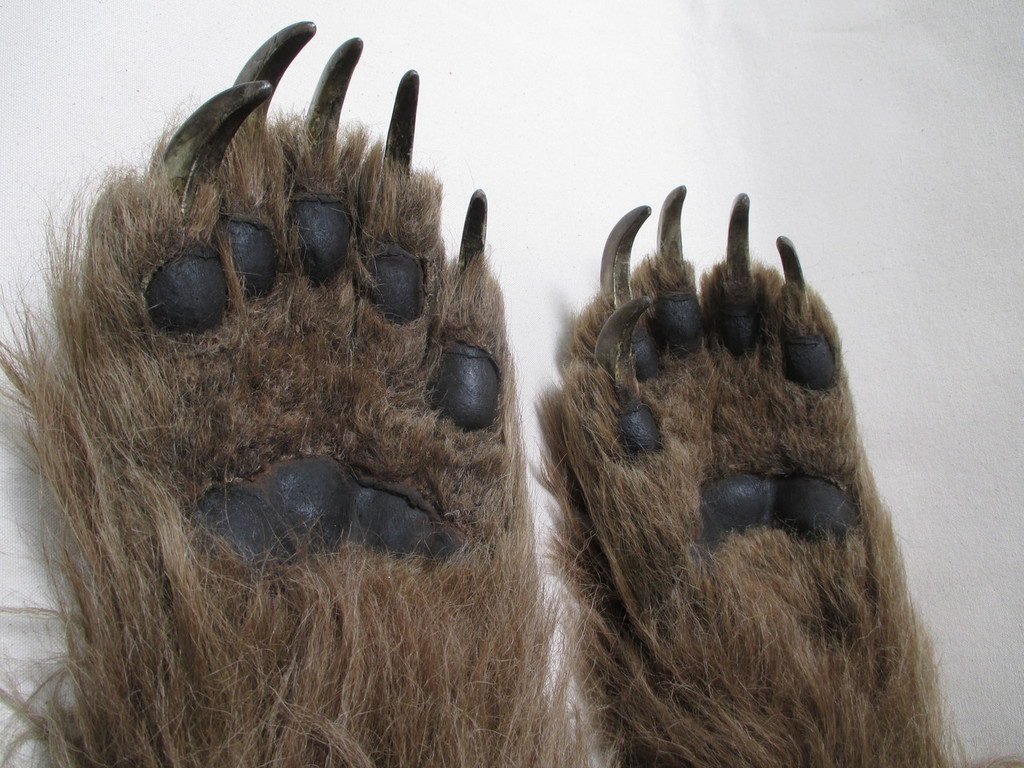 Realistic Brown Bear paw