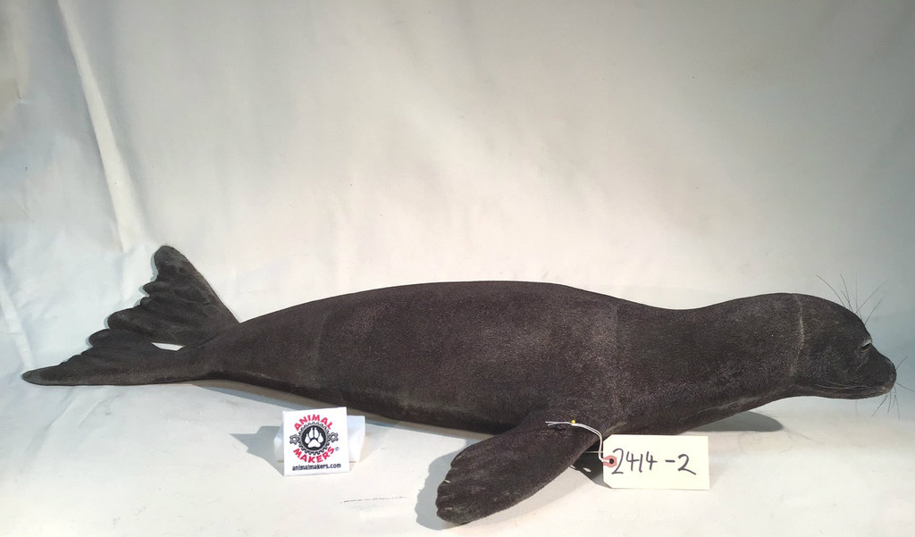 Baby Seal Replica 2 - Brown