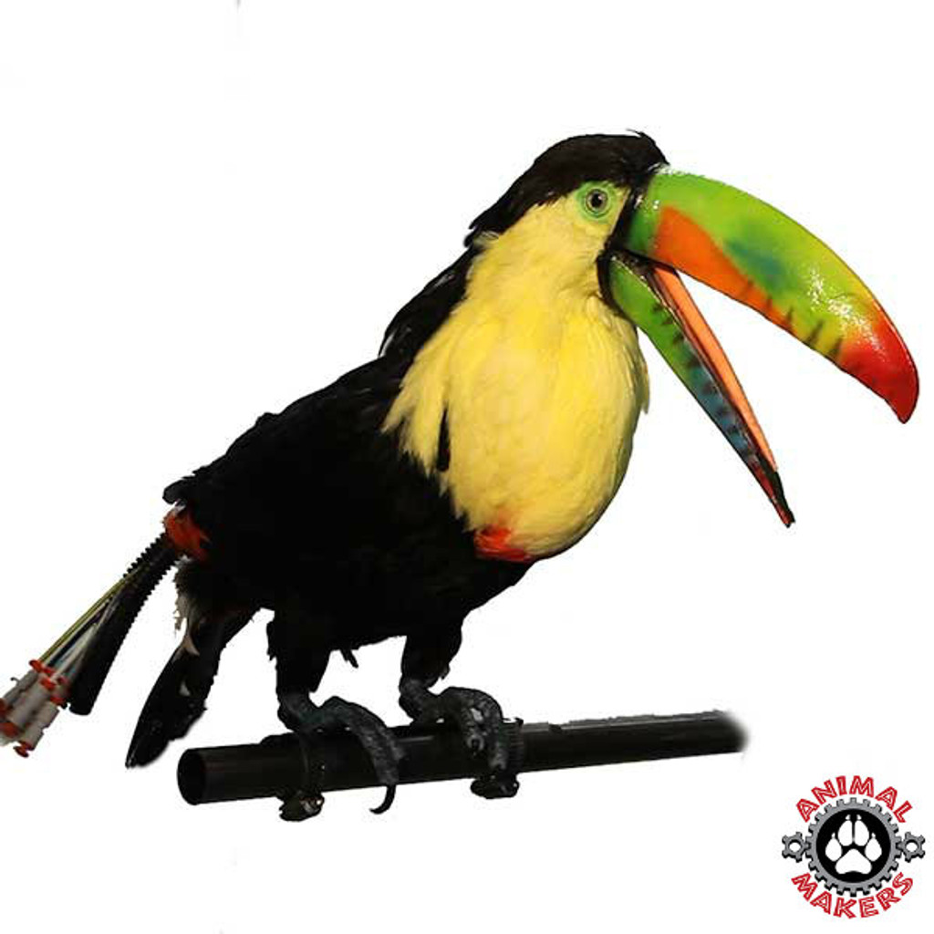 Toucan can be attached to almost anything!