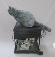 realistic, animated cat puppet for film makers from Sabrina the Teenage Witch
