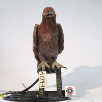 Brown eagle puppet animatronic
