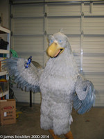 Adult eagle costume