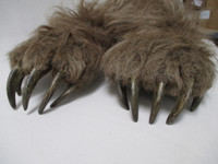 Realistic Brown Bear Claws