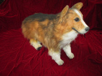 Small Dog Corgi Dog Prop