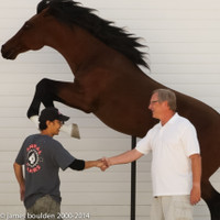 """Life-Sized, Jumping Horse Sculpture by Jian """"Jack"""" Zhang"""