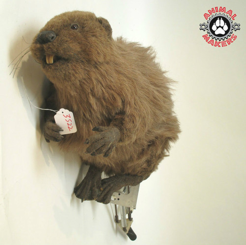 Animatronic Beaver Puppet with built in controller