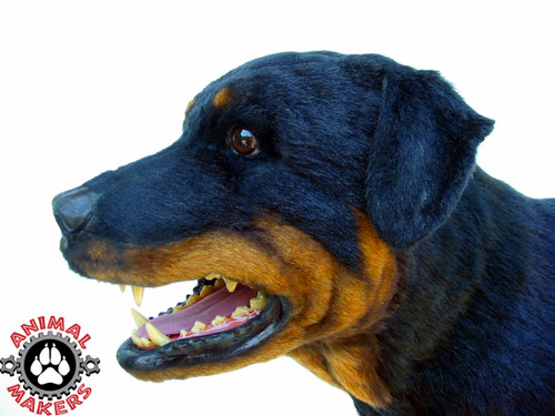 The Rottweiler dog attack rig is amazing and wonderfully detailed. The head moves naturally as does the jaw.