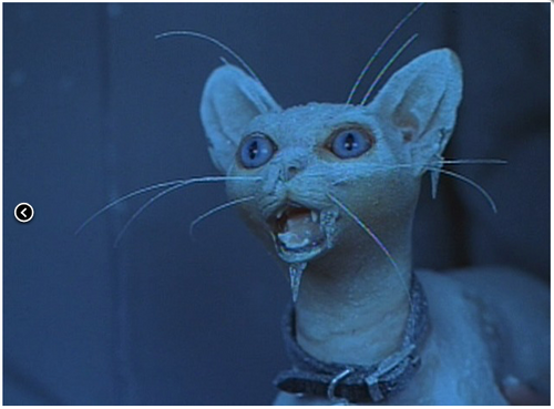 Mr. Biggelsworth the cat from Austin Powers