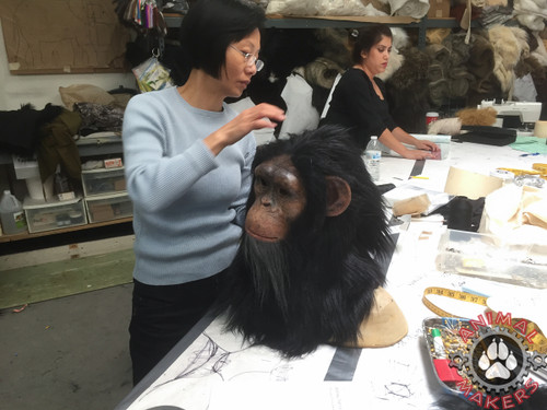 Karen adds the neoprene back to this chimpanzee mask