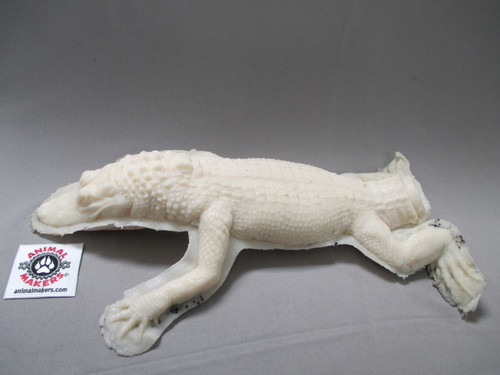 baby alligator prop puppet