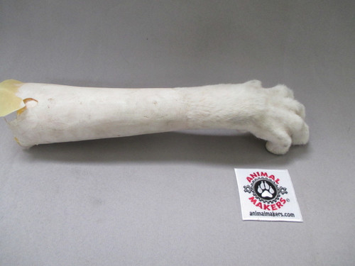 Large dog paw unfinished white