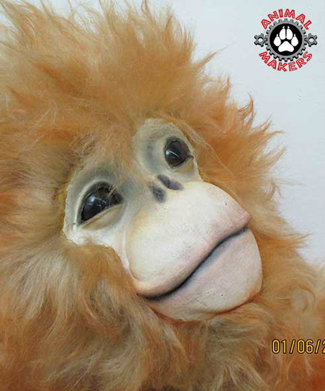 Life Sized Realistic Golden Monkey Replicas Display Item