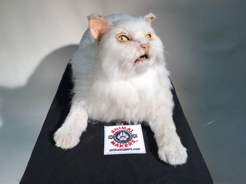 Animatronic Realistic Domestic Cat Puppet Movie Puppet By