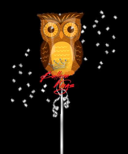 Fall Owl (D)