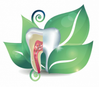 Holistic dentistry is more important than ever. But learn practices that cause you to visit the dentist infrequently!