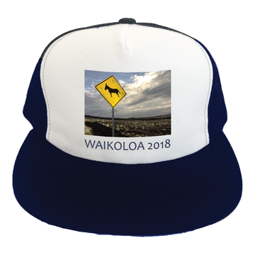 Hawaii State Convention Waikoloa 2018 (Navy/White Trucker Hat)