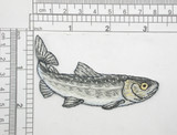 "Freshwater Trout Iron On Patch Applique Fully Embroidered  Measures 3 1/2"" across x 1 7/8"" high"