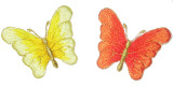 """Graduating Color Butterfly 2"""" *Colors*"""